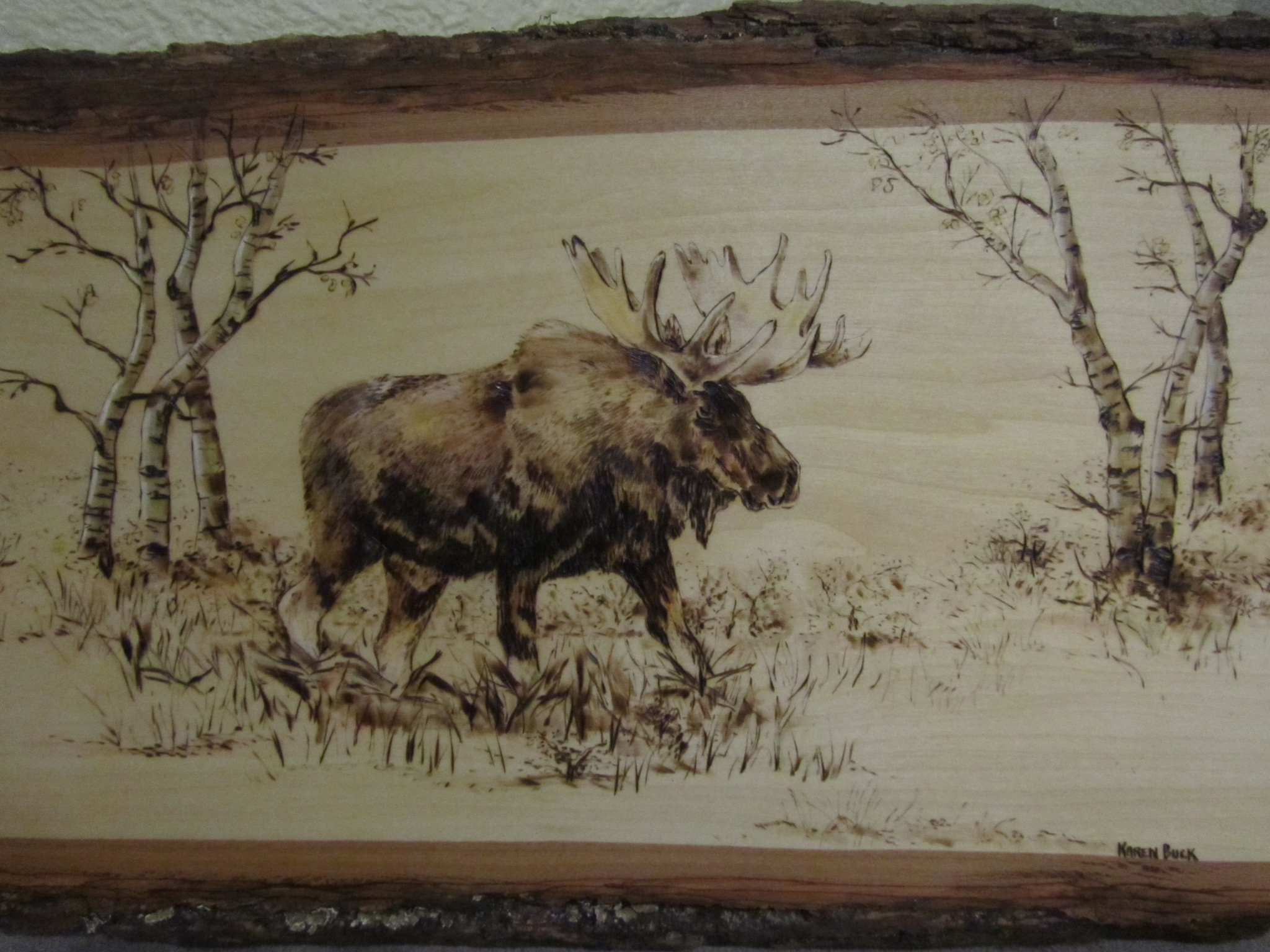 Bear Wood Burning Patterns Forums / pyrography in general / not as ...