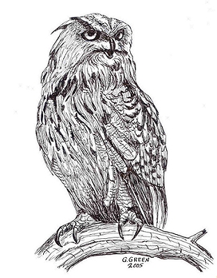 Nepl get wood owl craft patterns free craft patterns wood burning download free patterns pronofoot35fo Image collections